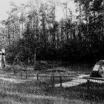 יער סטראשון1
